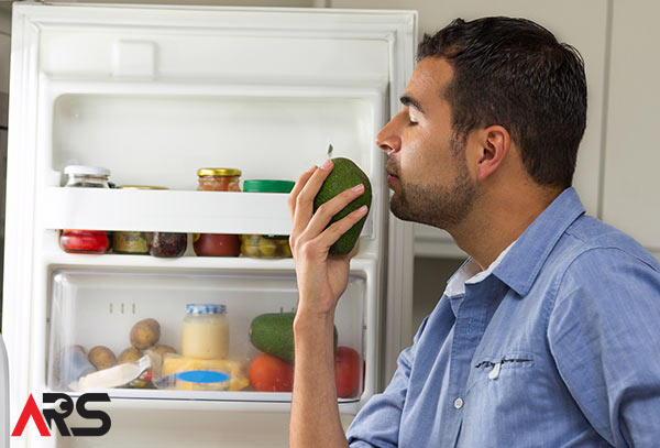 These Easy Tips Will Make Your Fridge Smell Great!